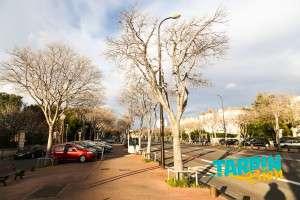 Avenue du Prado
