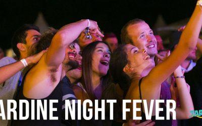 Sardine Night Fever